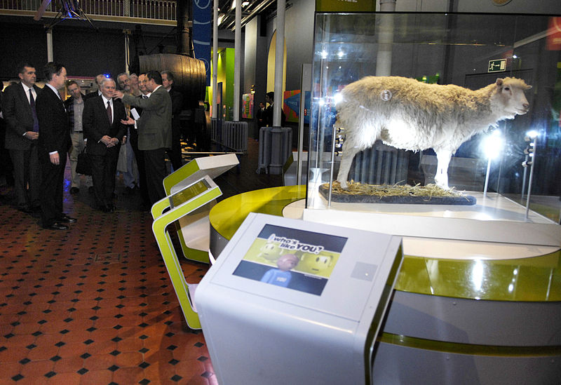 Defense Secretary Robert M. Gates looks at an exhibit of Dolly, the first cloned mammal, in the Royal Museum of Scotland in Edinburgh, Dec. 13, 2007. Defense Dept. photo by Cherie A. Thurlby