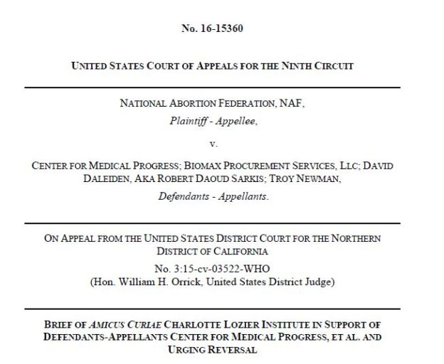 CLI amicus brief cover