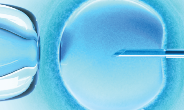 """Frozen Embryos and the """"Disposition Decision"""" 